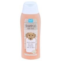 Lief! Shampoo Gevoelige Huid 300 ml