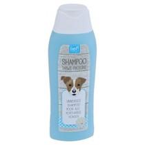 Lief! Shampoo Universeel Kort Haar 300 ml