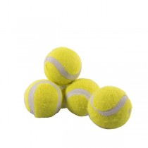 Rosewood Jolly Doggy Mini Tennisbal 5 stuks