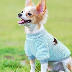 Chihuahua truitje Blauw maat M